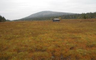 Споры об устранении препятствий в пользовании земельным участком