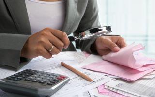 Как проверить свои налоги через интернет самостоятельно?
