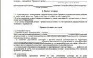 Агентский договор с физическим лицом: образец, бланк, скачать