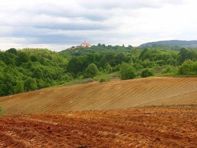Условно-разрешенный вид использования земельного участка