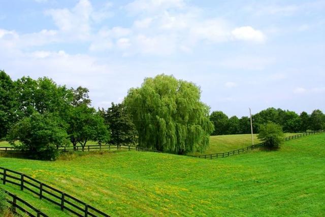 Где дают землю в безвозмездное пользование в 2017 году?