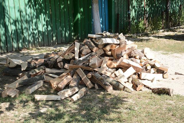 Как получить лес на строительство дома бесплатно?