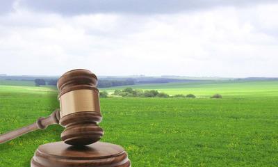 Аренда земельного участка у администрации по закону
